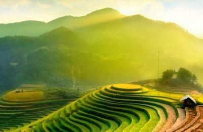 rice-fields-on-terraces-of-mu-cang-chai-yenbai-vietnam